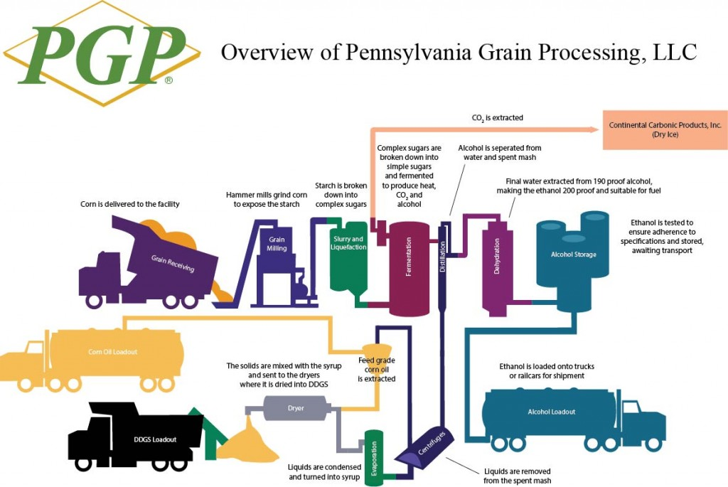 pgp process overview